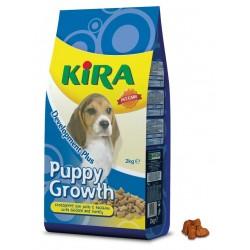 Kira - Puppy Growth