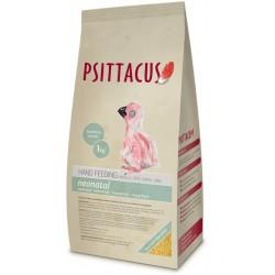 Psittacus Hand Feeding - Neonatal