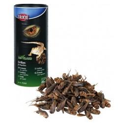 Reptiland  Dried Crickets