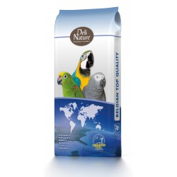 Beyers No.57 - Macaws Excellent
