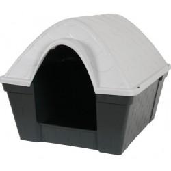 Casa Felice Medium Dog