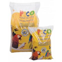 Pico Shell Sand Brown