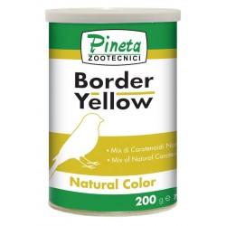 Pineta Border Yellow Carotene  200gr