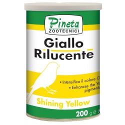 Pineta Giallo Rilucente Yellow  200gr