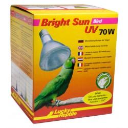 Lucky Reptile Bright Sun UV Bird  70w