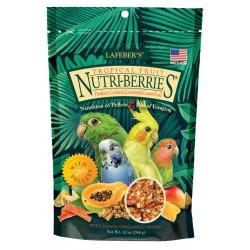 NutriBerries Tropical Small Parrot & Cockatiel 284gr