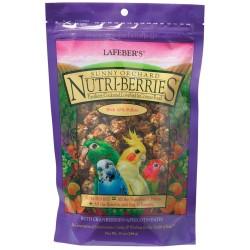 Nutri-Berries Sunny Orchard Parakeet  284gr