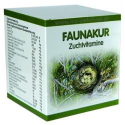Easyyem Faunakur
